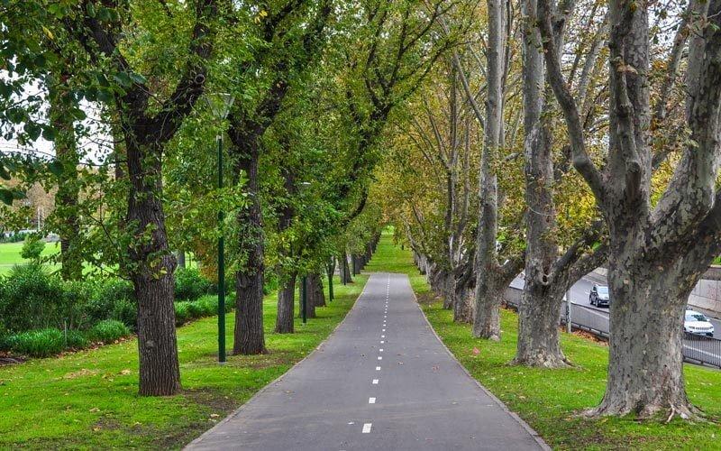 Botanik-Garden-Melbourne