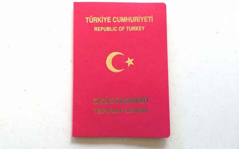 Pasaport-Cesitleri