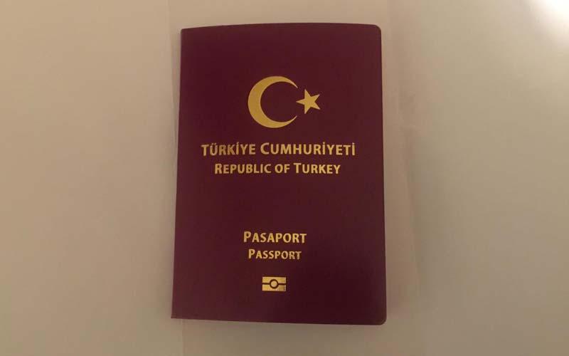 Pasaport-Turleri