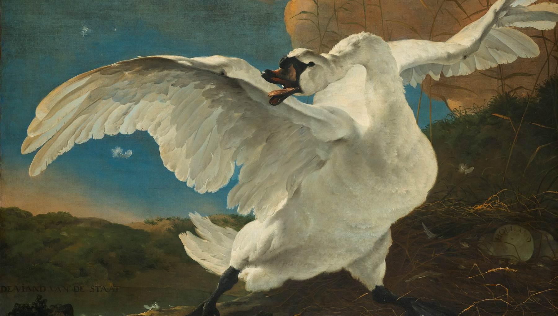Rijksmuseum-The-Threatened-Swan