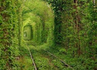 Kiev-Ask-Tuneli